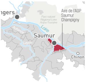 Saumur-Champigny; LoireValleyWine.com