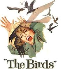 The Birds, 1963 — Alfred Hitchcock