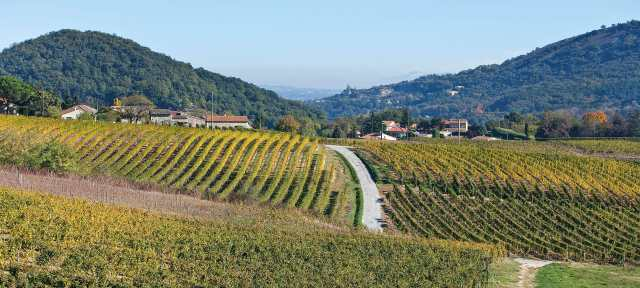Saint-Peray AOC, Northern Rhone, France; vins-rhone.com
