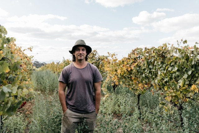 Ryan O'Meara is managing his vineyards in order to pursue organic farming, and has radically matured a riesling under a veil of flor yeast.