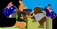 'Roo v. Kiwi