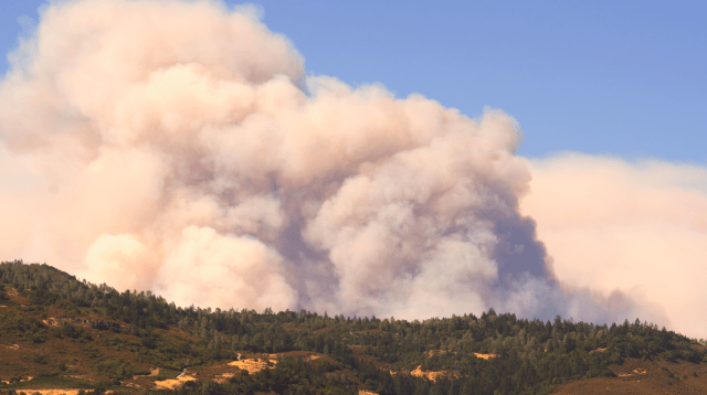 The Butts Fire in Pope Valley overshadows the vineyards and winerys of Californias Napa Valley. Photo courtesy of tfoxfoto/iStock.