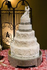 photos-of-wedding-cakes-at-briscoe-manor-020