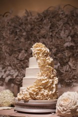 photos-of-wedding-cakes-at-briscoe-manor-022