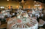 photos-of-wedding-receptions-at-briscoe-manor-090