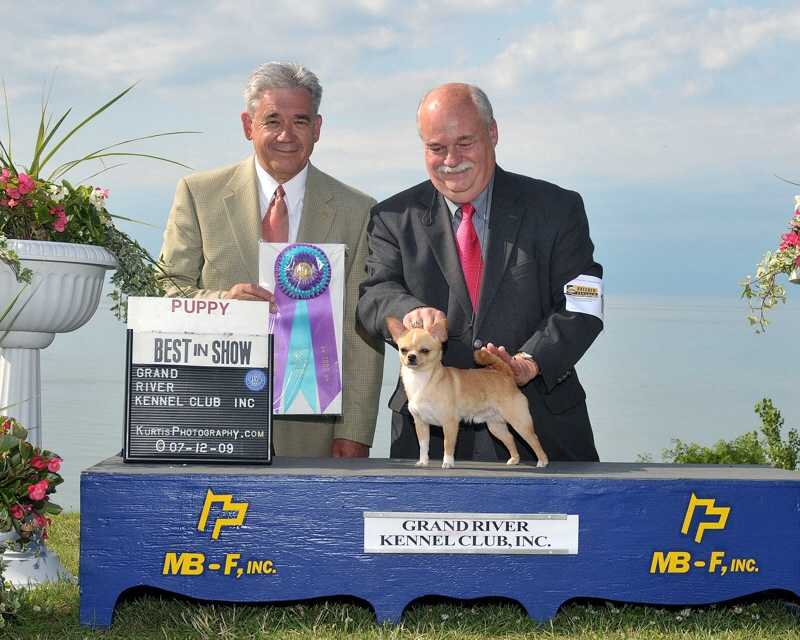 Jim Lehman and Champion Tommie winning Best Puppy In Show