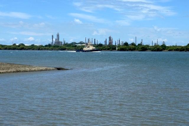 Brisbane River Myrtletown Reserve