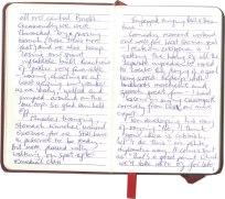 Roy-Diary-pg14
