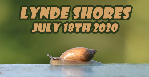 lynde shores july 18