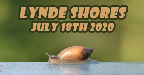 lynde shores july 18