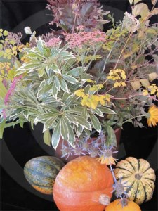 Squash with autumn flowers and foliage