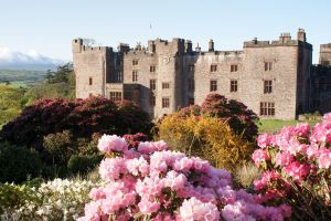 Muncaster Castle surrounded by flowers