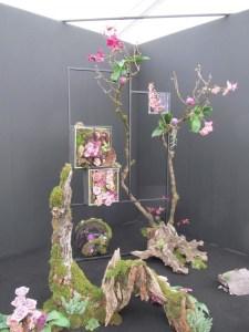 RHS Tatton Park Floral Art July 2013