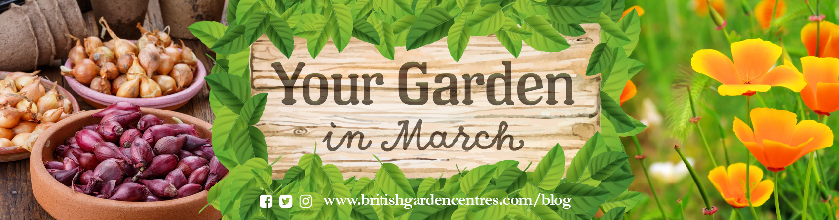 Your garden in - March