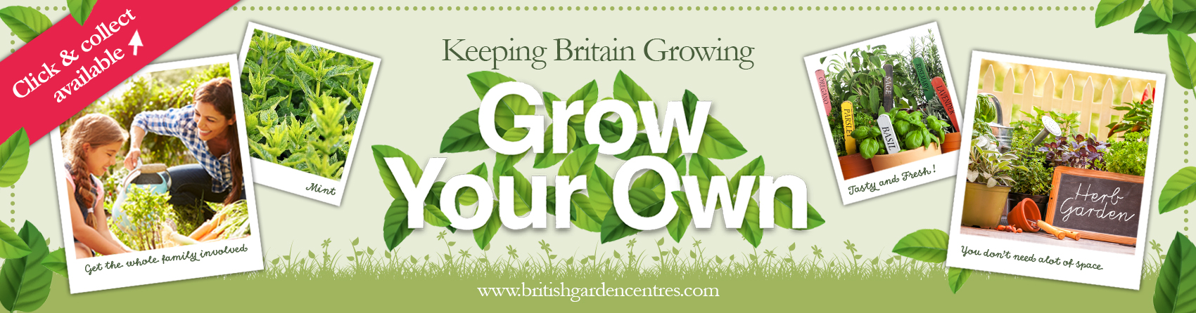 Grow your own - herbs