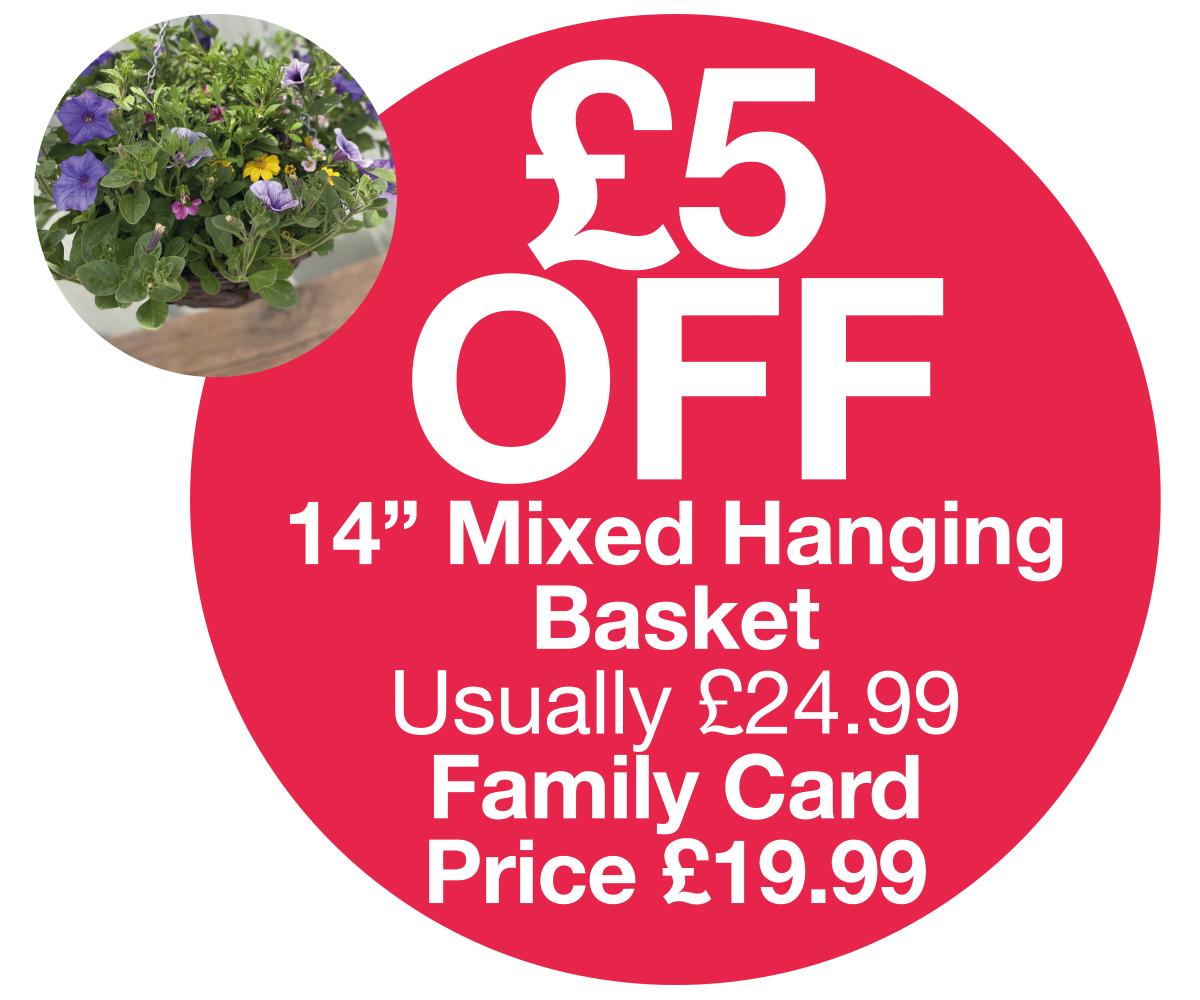 FC OFFER - 14 inch hanging basket £5 OFF
