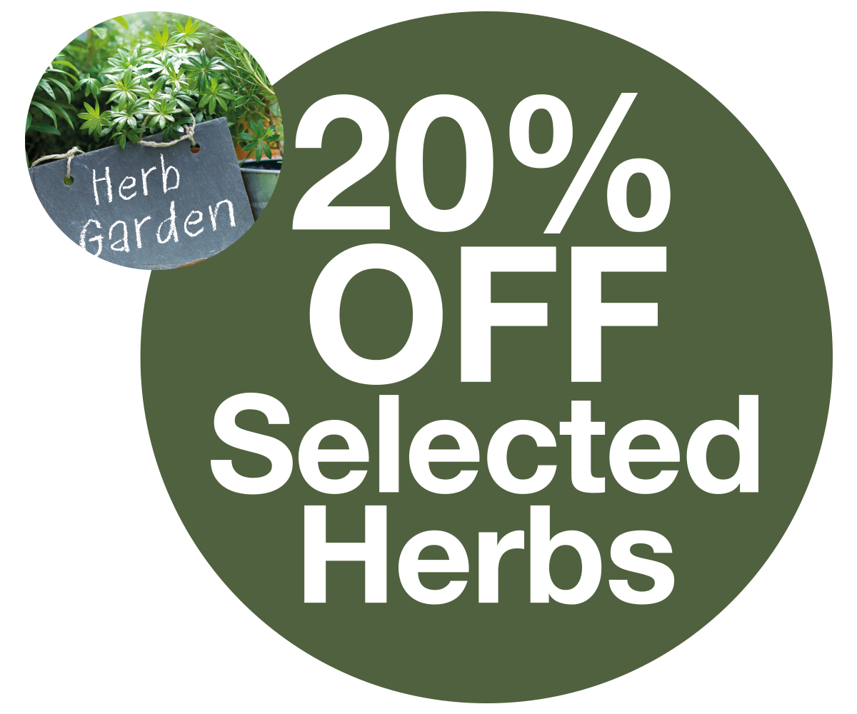 20% off herbs