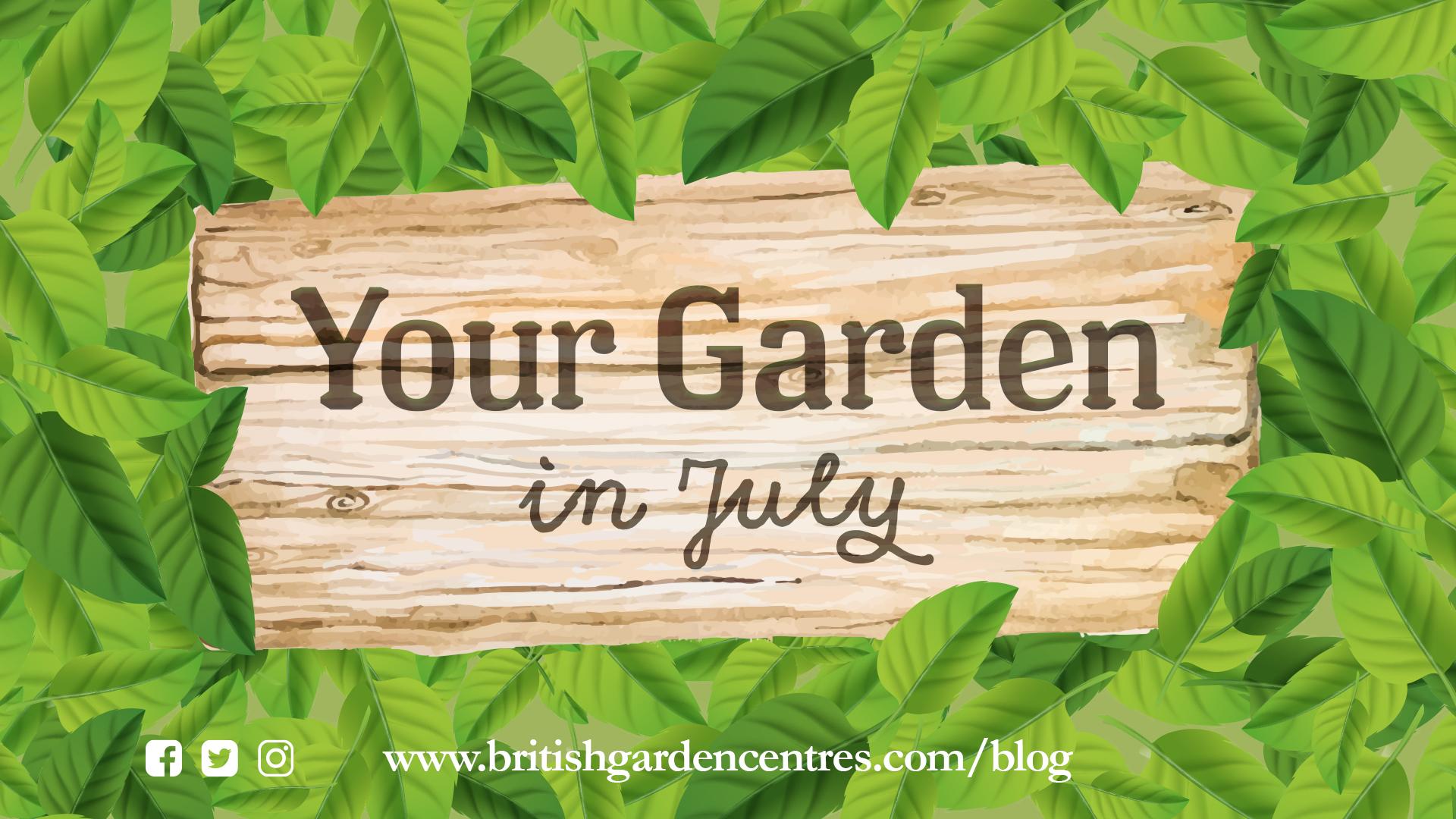 Your garden - July
