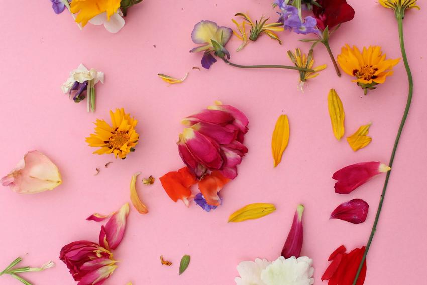 Flower bracelets - petals
