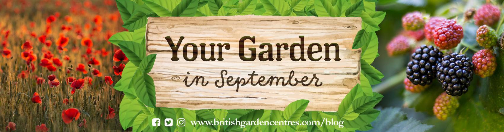 gardening products, british garden centres, garden tools