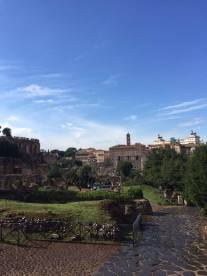 A beautiful view of the Forum to end the tour on!