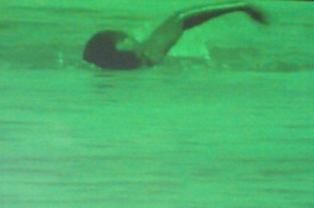 3. one armed swimmer