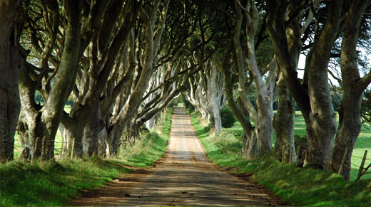 kings road filming location
