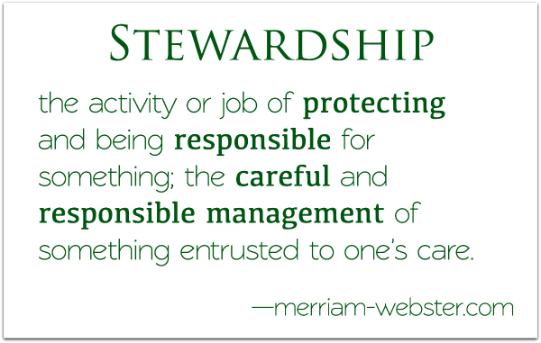 definition stewardship, steward, manage