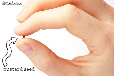 god-loves-little-things-like-mustard-seeds