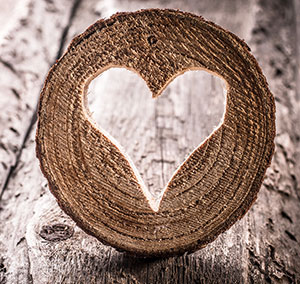 A picture of a heart to illustrate the pain of having a distant teenager. Brittani Persha Counseling helps middle school and high school students adjusting after a divorce, having difficulty in schools, anger, ADHD, trauma, grief & more.