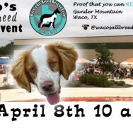 Visit BRIT at the Waco All-breed Rescue Event April 8th