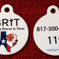 Have YOU registered your Brittany's Microchip?