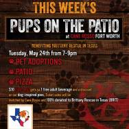 Pups on the Patio – Tue. May 24th