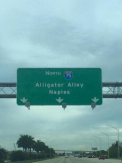 heading home on Alligator Alley
