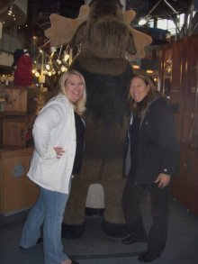 our first moose encounter!