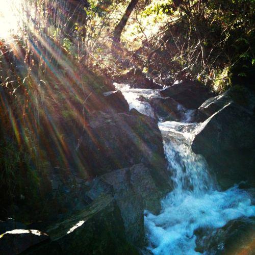 stream after rain