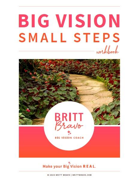 Big Vision Small Steps Workbook