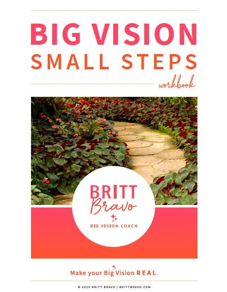Big Vision Small Steps Workbook