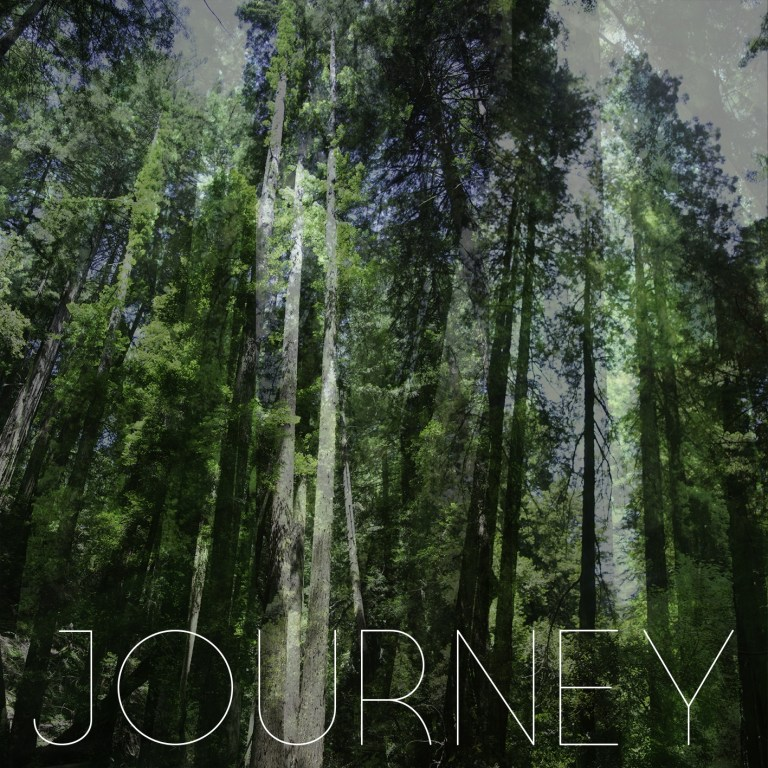 Journey Music Cover, a forest refracted and altered.