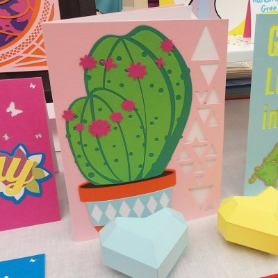 Cactus Card in pink displayed with other cards.
