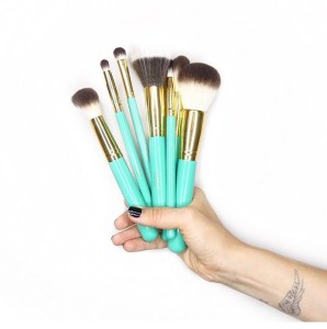 ec78ea24c434 Illuminate Cosmetics By Ashley Tisdale Brushes Sold Out!