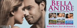 The Sullivans Boxed Set - Blitz Banner