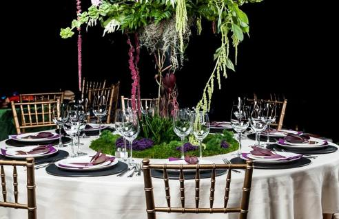 tablescape-full-view-panoramic-view