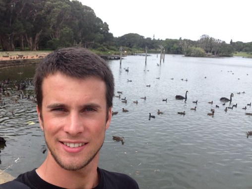 Black Swans :)