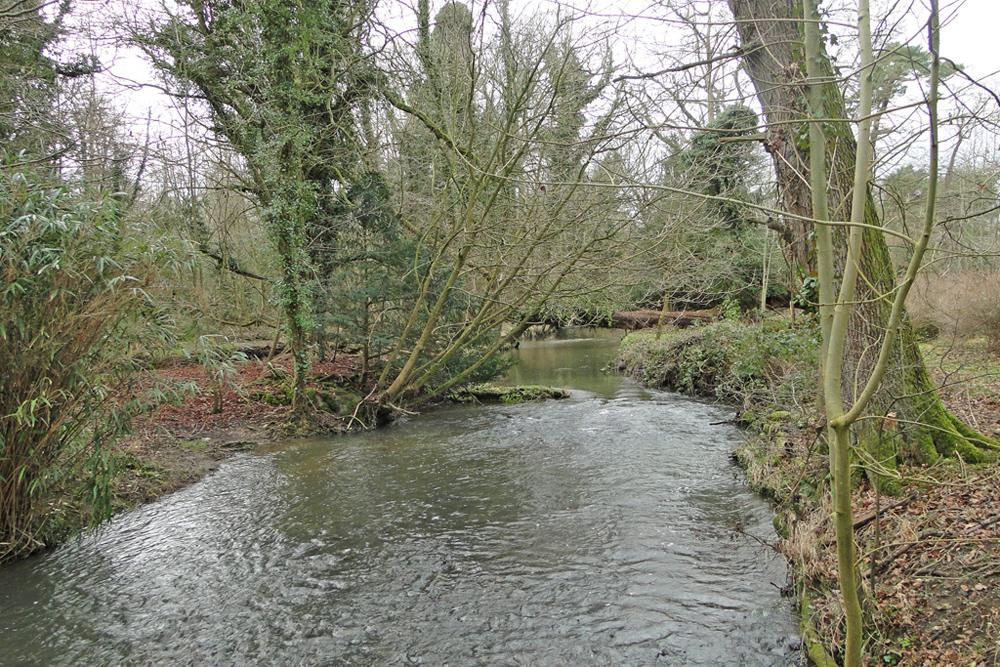 river tas rainthorpe by-Adrian-S-Pye