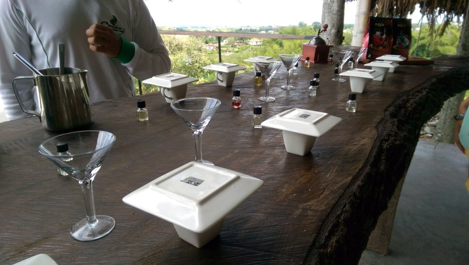 Coffee tasting at the Hacienda Combia's coffee tour