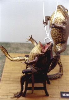 frogdentist.jpg