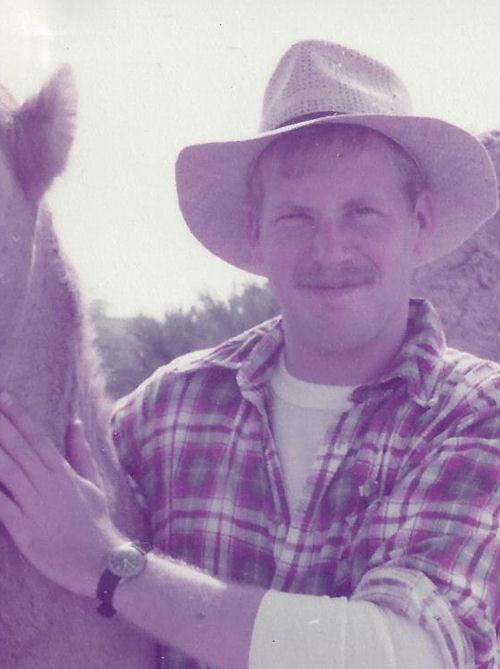 Jeff horse