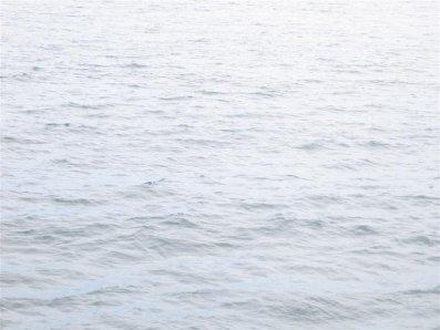 oceanjpg.jpg