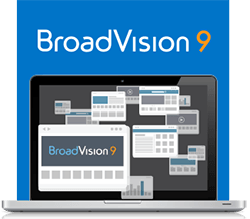 BroadVision 9-Business to Business Solution